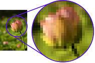 raster graphic