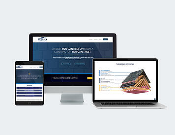 Blue Frog portfolio image - Hedrick Construction website