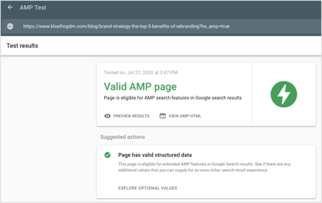 Google AMP Test Tool Results