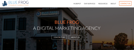 blue-frog-marketing-homepage